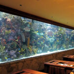 The aquarium in the hotel is a highlight of the interior and a source of positive emotions